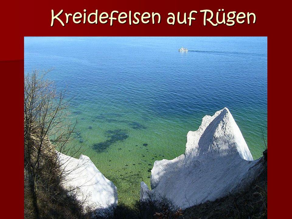 Kreidefelsen auf Rügen