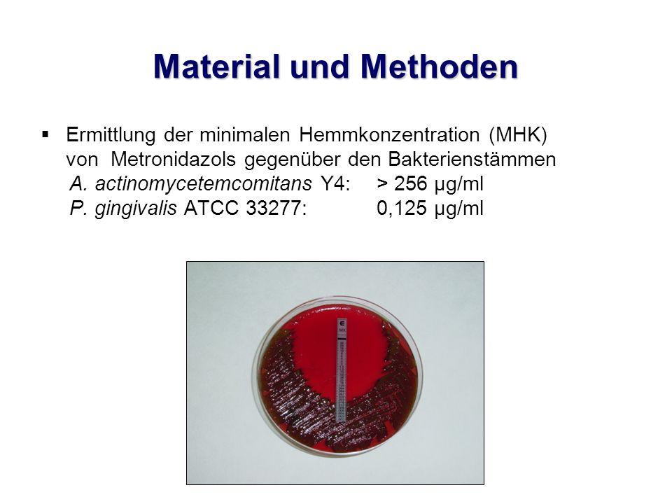 Material und Methoden  In-vitro-Studie an KB-Zellen, einer permanenten Epithelzellreihe  Durchführung von drei Versuchsreihen: Vorinkubation der Zellen mit Metronidazol Vorinkubation der Bakterien mit Metronidazol Zugabe des Metronidazols zum Zeitpunkt der Infektion der Zellen