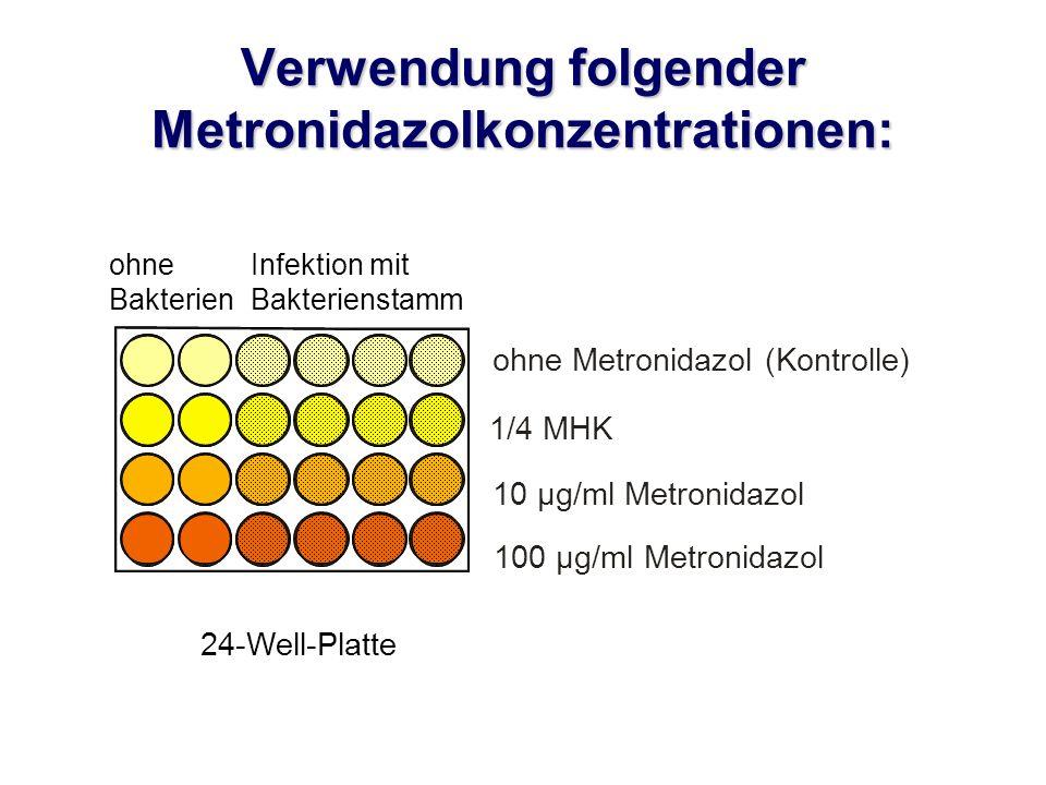 Verwendung folgender Metronidazolkonzentrationen: ohne Metronidazol (Kontrolle) 1/4 MHK 10 µg/ml Metronidazol 100 µg/ml Metronidazol 24-Well-Platte ohne Bakterien Infektion mit Bakterienstamm