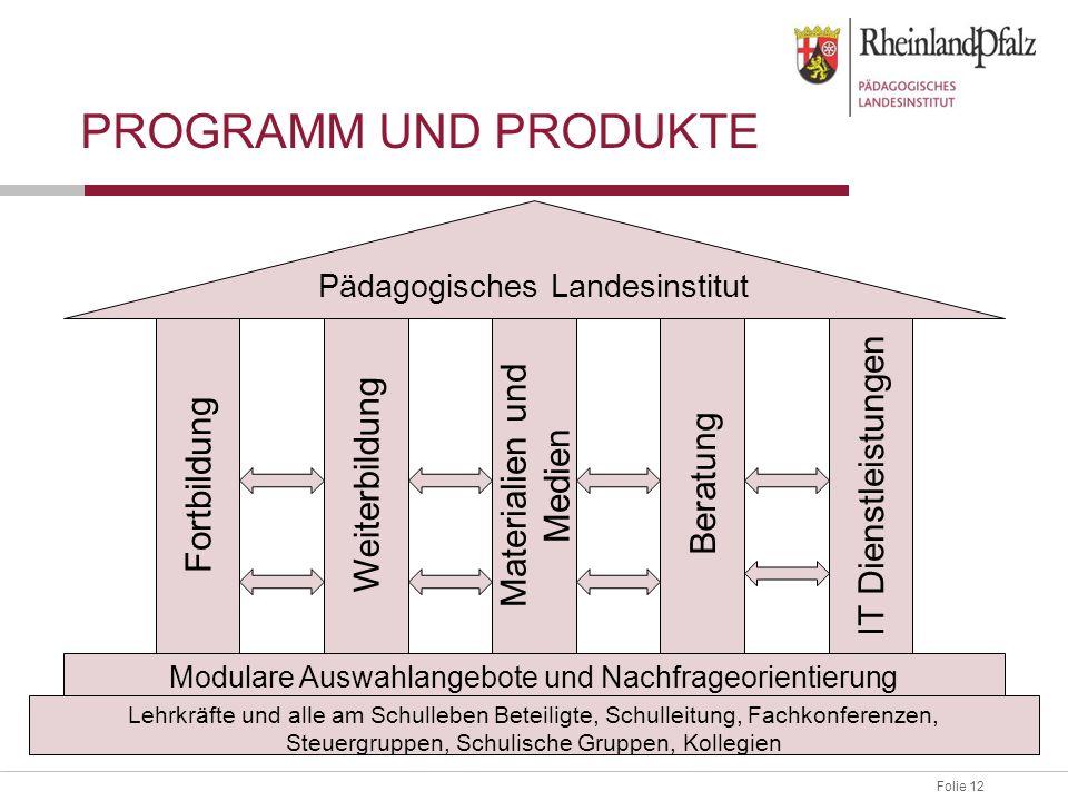 Folie 12 PROGRAMM UND PRODUKTE Lehrkräfte und alle am Schulleben Beteiligte, Schulleitung, Fachkonferenzen, Steuergruppen, Schulische Gruppen, Kollegi