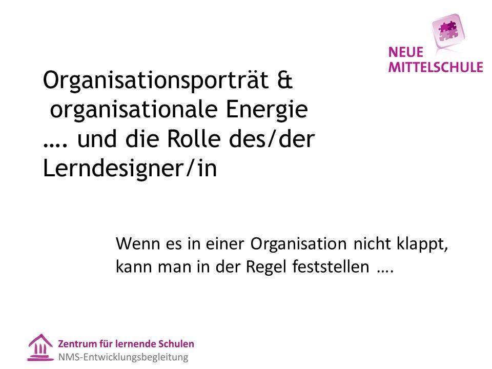 Organisationsporträt & organisationale Energie ….