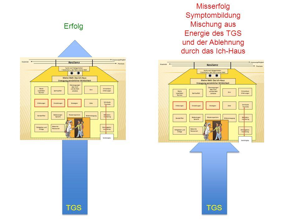 Erfolg Misserfolg Symptombildung Mischung aus Energie des TGS und der Ablehnung durch das Ich-Haus TGS