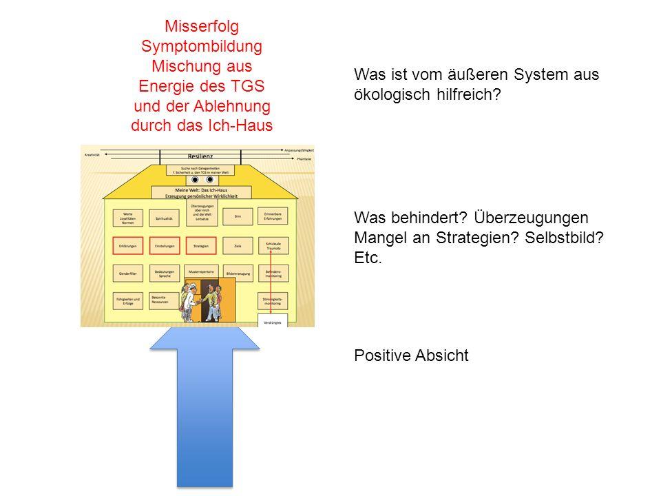 Positive Absicht Was behindert? Überzeugungen Mangel an Strategien? Selbstbild? Etc. Was ist vom äußeren System aus ökologisch hilfreich? Misserfolg S
