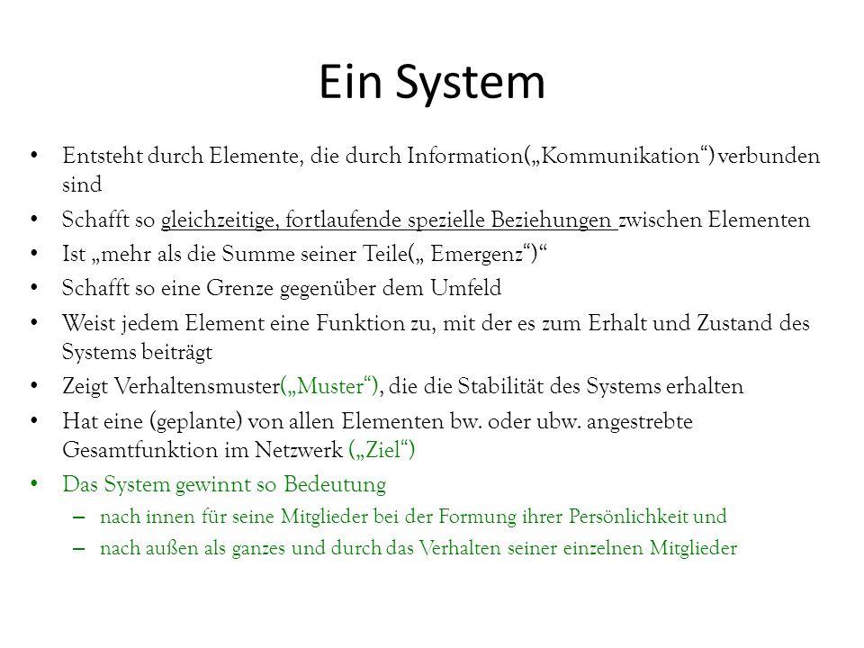 """Entsteht durch Elemente, die durch Information(""""Kommunikation"""") verbunden sind Schafft so gleichzeitige, fortlaufende spezielle Beziehungen zwischen E"""