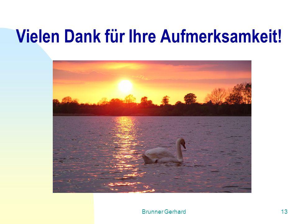 Brunner Gerhard13 Vielen Dank für Ihre Aufmerksamkeit!