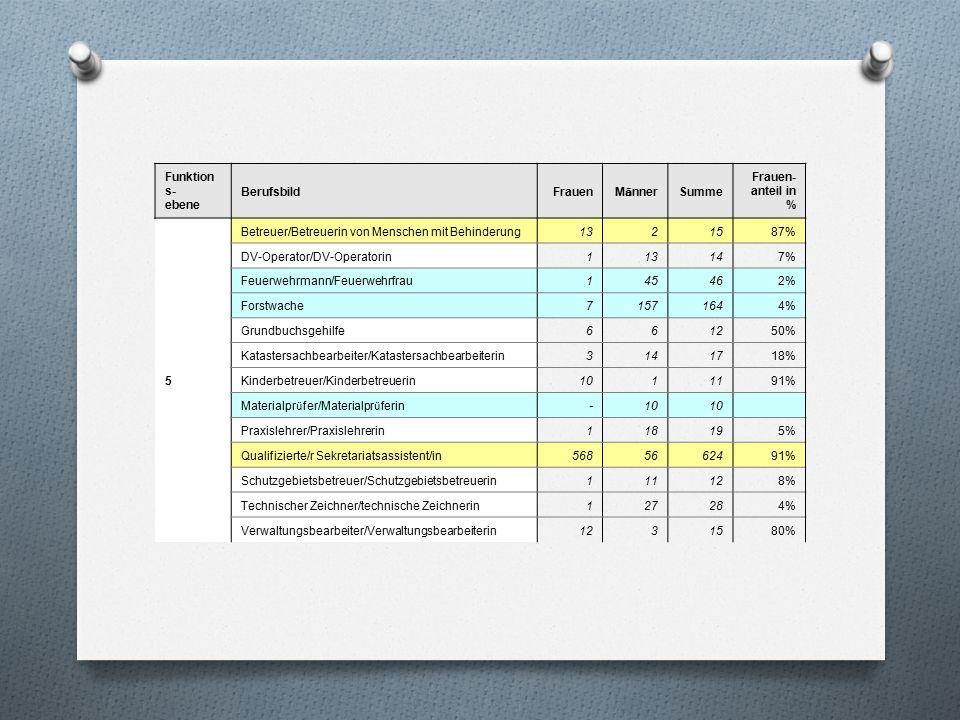 Funktion s- ebene BerufsbildFrauen M ä nner Summe Frauen- anteil in % 5 Betreuer/Betreuerin von Menschen mit Behinderung1321587% DV-Operator/DV-Operat