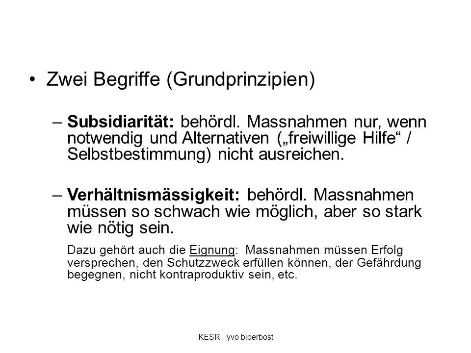 """Zwei Begriffe (Grundprinzipien) –Subsidiarität: behördl. Massnahmen nur, wenn notwendig und Alternativen (""""freiwillige Hilfe"""" / Selbstbestimmung) nich"""