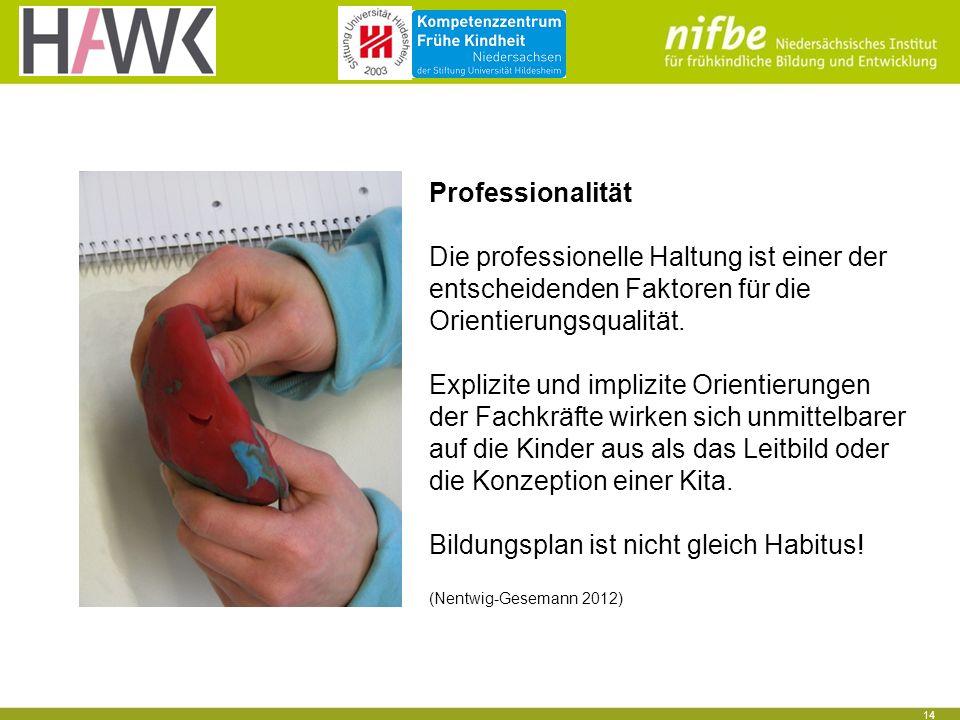 14 Professionalität Die professionelle Haltung ist einer der entscheidenden Faktoren für die Orientierungsqualität.