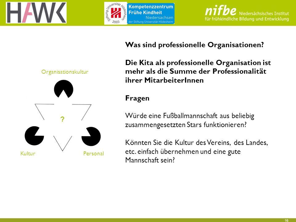 16 Was sind professionelle Organisationen.