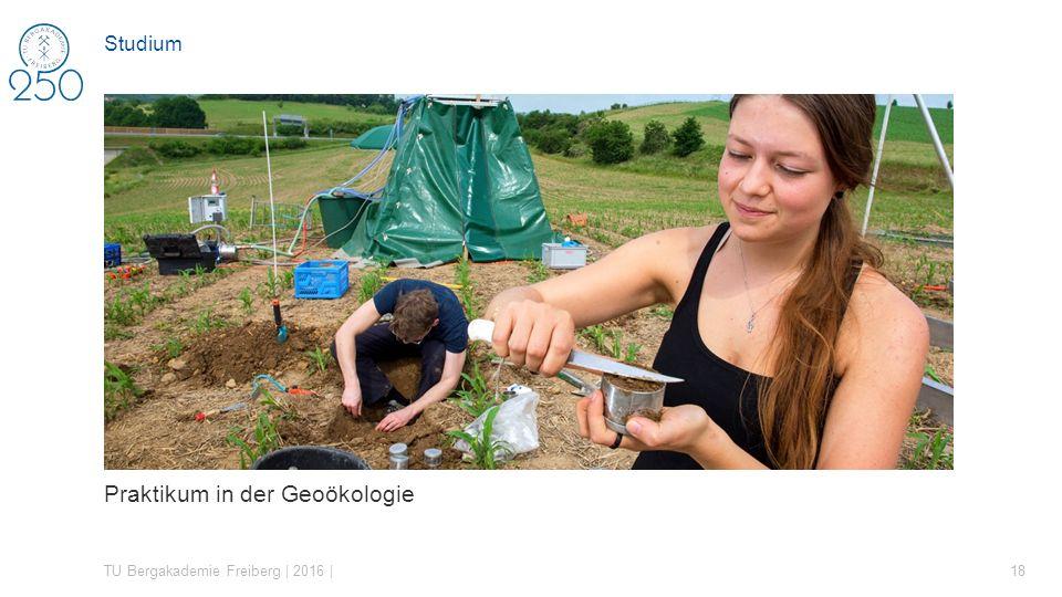 Praktikum in der Geoökologie TU Bergakademie Freiberg | 2016 | 18 Studium