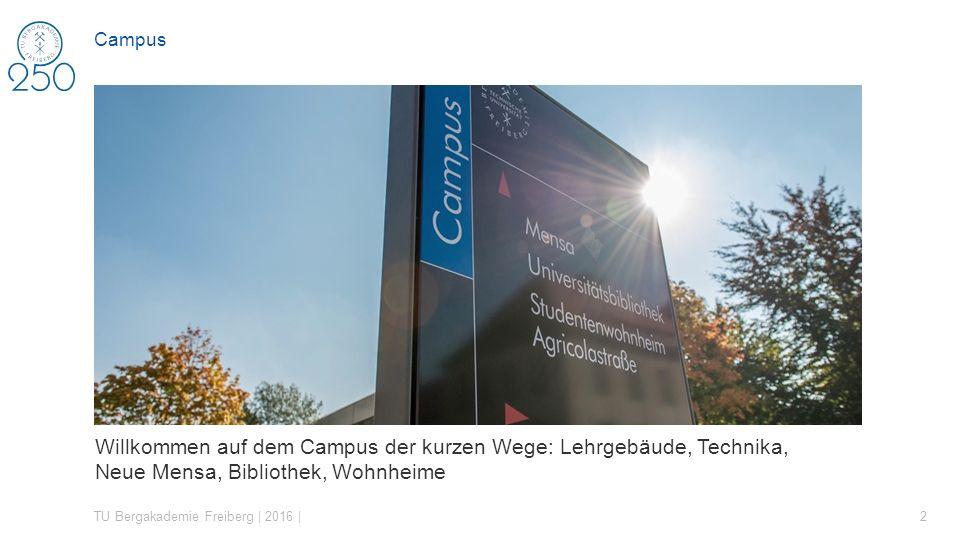 Willkommen auf dem Campus der kurzen Wege: Lehrgebäude, Technika, Neue Mensa, Bibliothek, Wohnheime TU Bergakademie Freiberg | 2016 | 2 Campus