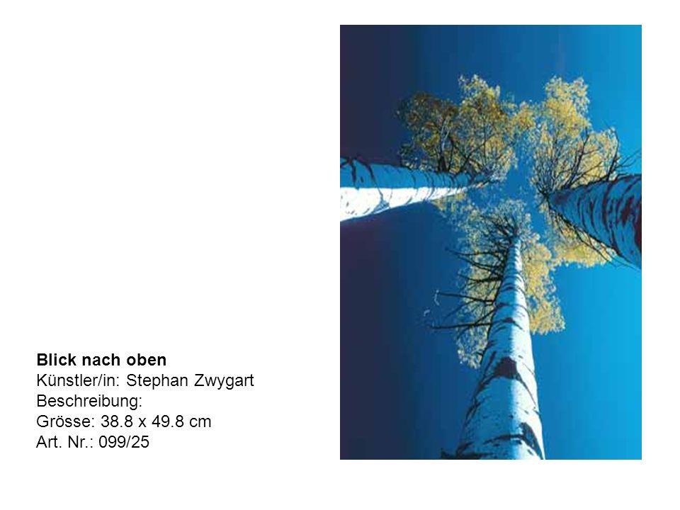 Blick nach oben Künstler/in: Stephan Zwygart Beschreibung: Grösse: 38.8 x 49.8 cm Art. Nr.: 099/25