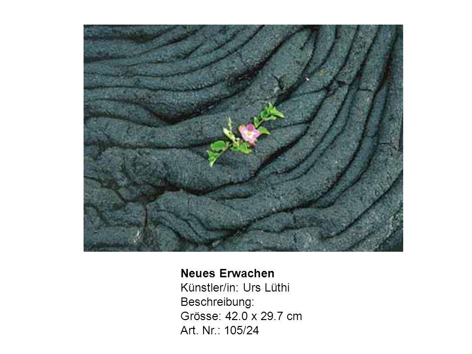 Neues Erwachen Künstler/in: Urs Lüthi Beschreibung: Grösse: 42.0 x 29.7 cm Art. Nr.: 105/24