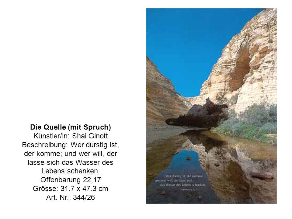 Die Quelle (mit Spruch) Künstler/in: Shai Ginott Beschreibung: Wer durstig ist, der komme; und wer will, der lasse sich das Wasser des Lebens schenken.