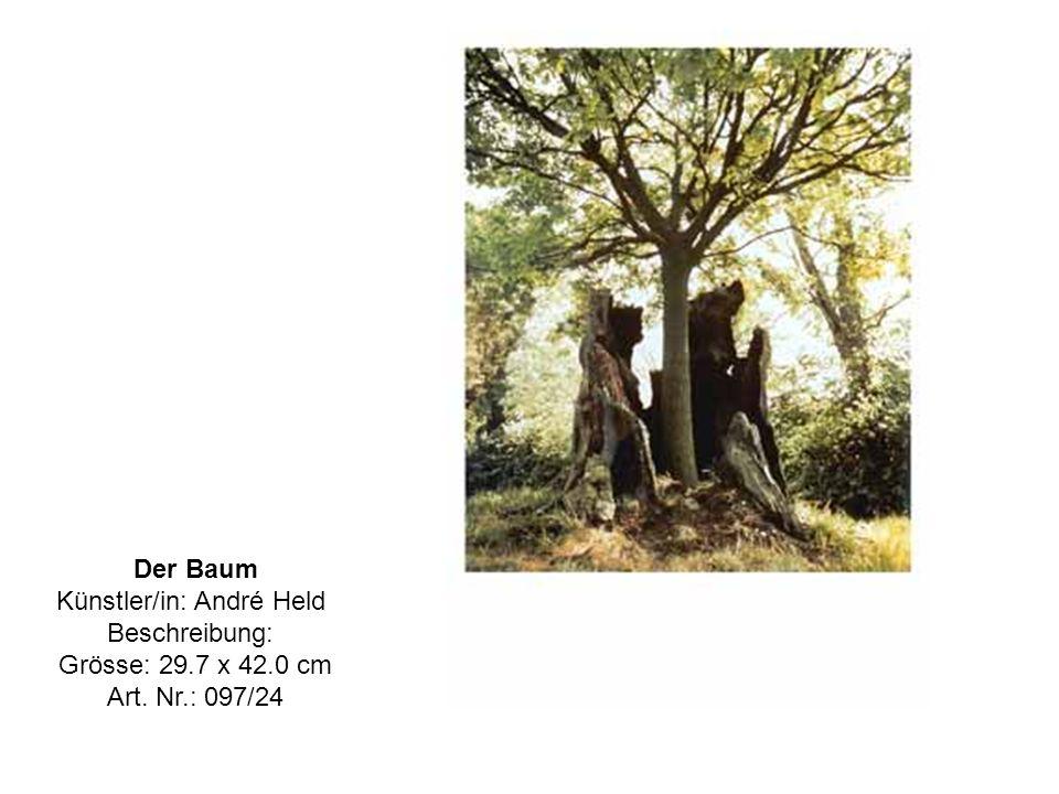 Der Baum Künstler/in: André Held Beschreibung: Grösse: 29.7 x 42.0 cm Art. Nr.: 097/24