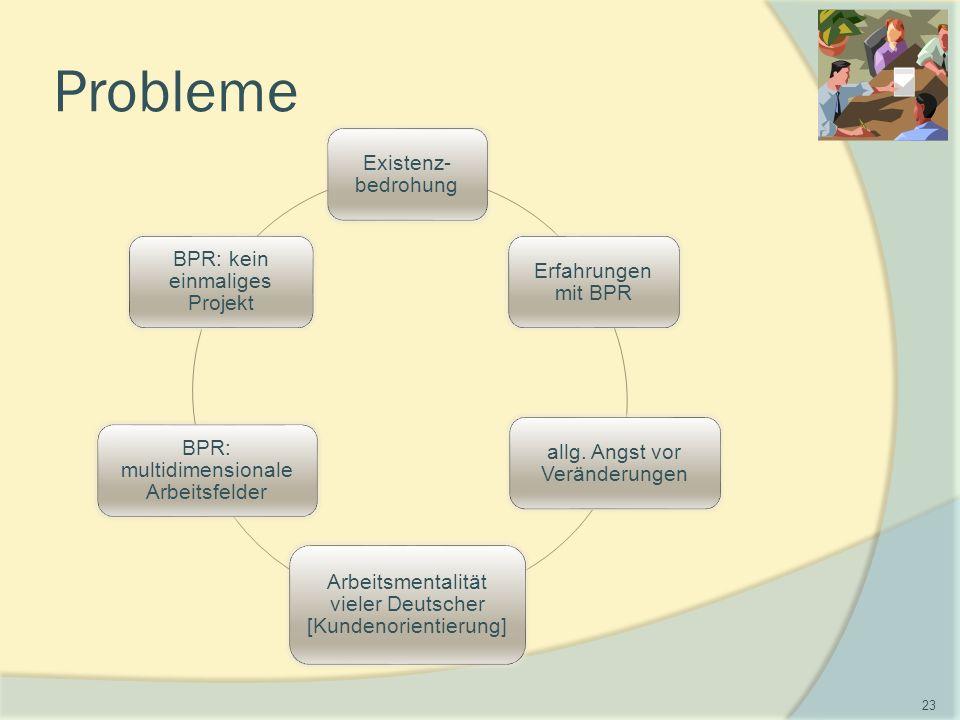 Probleme Existenz- bedrohung Erfahrungen mit BPR allg.