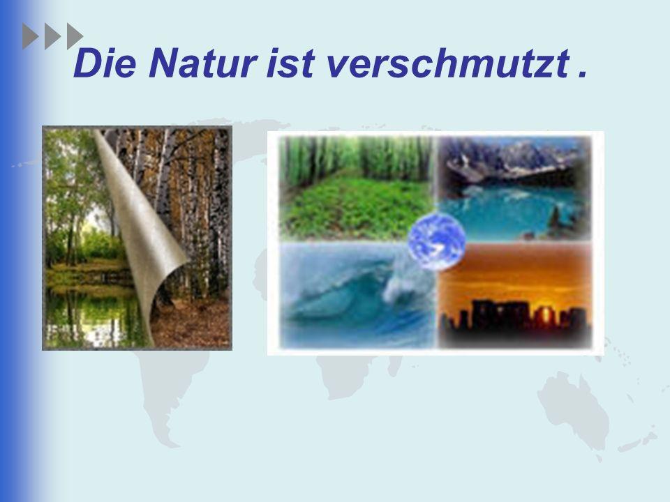 Die Natur ist verschmutzt.