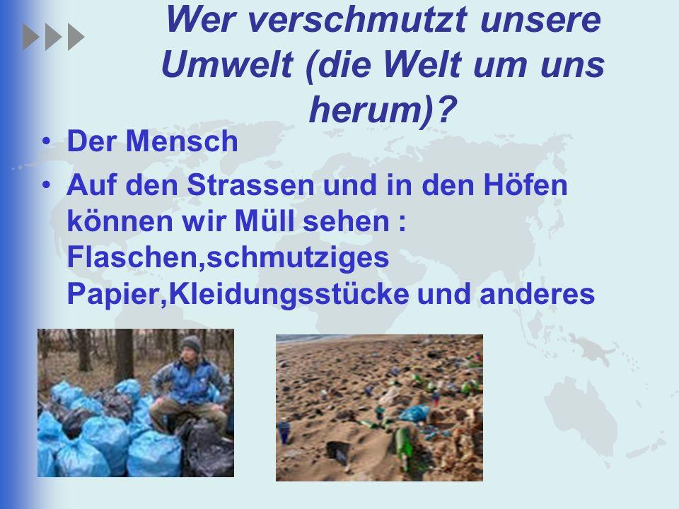 Wer verschmutzt unsere Umwelt (die Welt um uns herum)? Der Mensch Auf den Strassen und in den Höfen können wir Müll sehen : Flaschen,schmutziges Papie