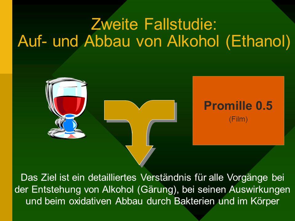 Zweite Fallstudie: Auf- und Abbau von Alkohol (Ethanol) Das Ziel ist ein detailliertes Verständnis für alle Vorgänge bei der Entstehung von Alkohol (Gärung), bei seinen Auswirkungen und beim oxidativen Abbau durch Bakterien und im Körper Promille 0.5 (Film)