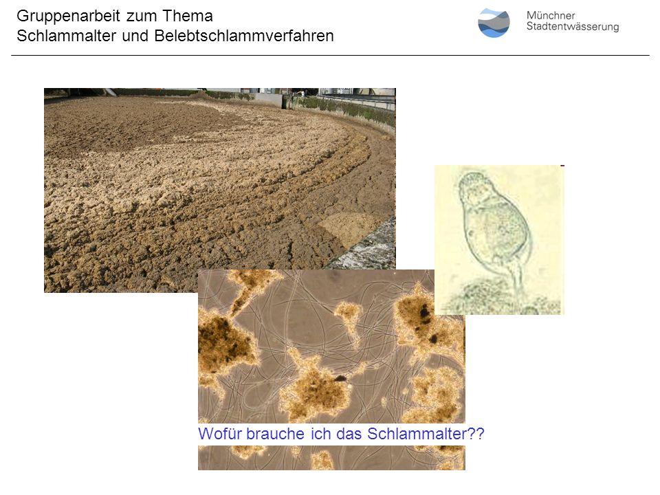 Quelle: Kainz/Gruber, TU Graz, WABE04