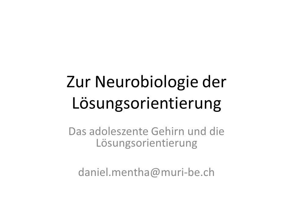 Einige Hirnbereiche und deren Hauptfunktionen Das Stammhirn: Steuerung überlebenswichtiger Funktionen und physikalischer / biochemischer Gleichgewichte Basale reflexartige Verhaltensprogramme der Annäherung oder Vermeidung Produktion von gewissen Neurotransmittern (Dopamin, Serotonin, Noradrenalin, Acetylcholin), die ins limbische System und kortikale Grosshirnbereiche ausgeschüttet werden.