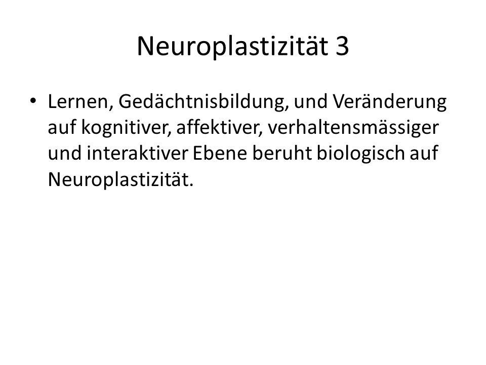 Neuroplastizität 3 Lernen, Gedächtnisbildung, und Veränderung auf kognitiver, affektiver, verhaltensmässiger und interaktiver Ebene beruht biologisch