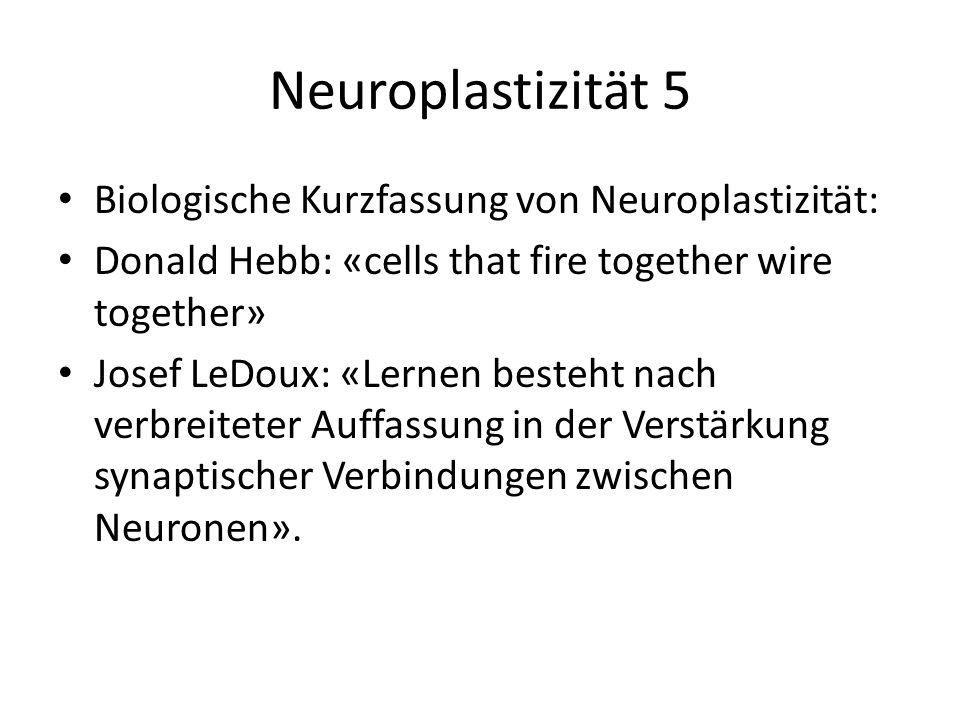 Neuroplastizität 5 Biologische Kurzfassung von Neuroplastizität: Donald Hebb: «cells that fire together wire together» Josef LeDoux: «Lernen besteht n