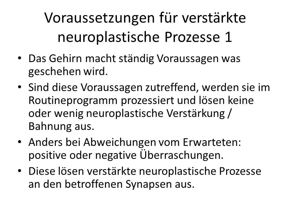 Voraussetzungen für verstärkte neuroplastische Prozesse 1 Das Gehirn macht ständig Voraussagen was geschehen wird. Sind diese Voraussagen zutreffend,