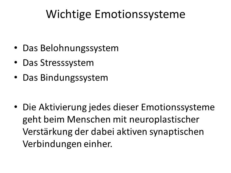 Wichtige Emotionssysteme Das Belohnungssystem Das Stresssystem Das Bindungssystem Die Aktivierung jedes dieser Emotionssysteme geht beim Menschen mit