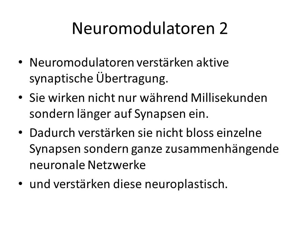 Neuromodulatoren 2 Neuromodulatoren verstärken aktive synaptische Übertragung. Sie wirken nicht nur während Millisekunden sondern länger auf Synapsen