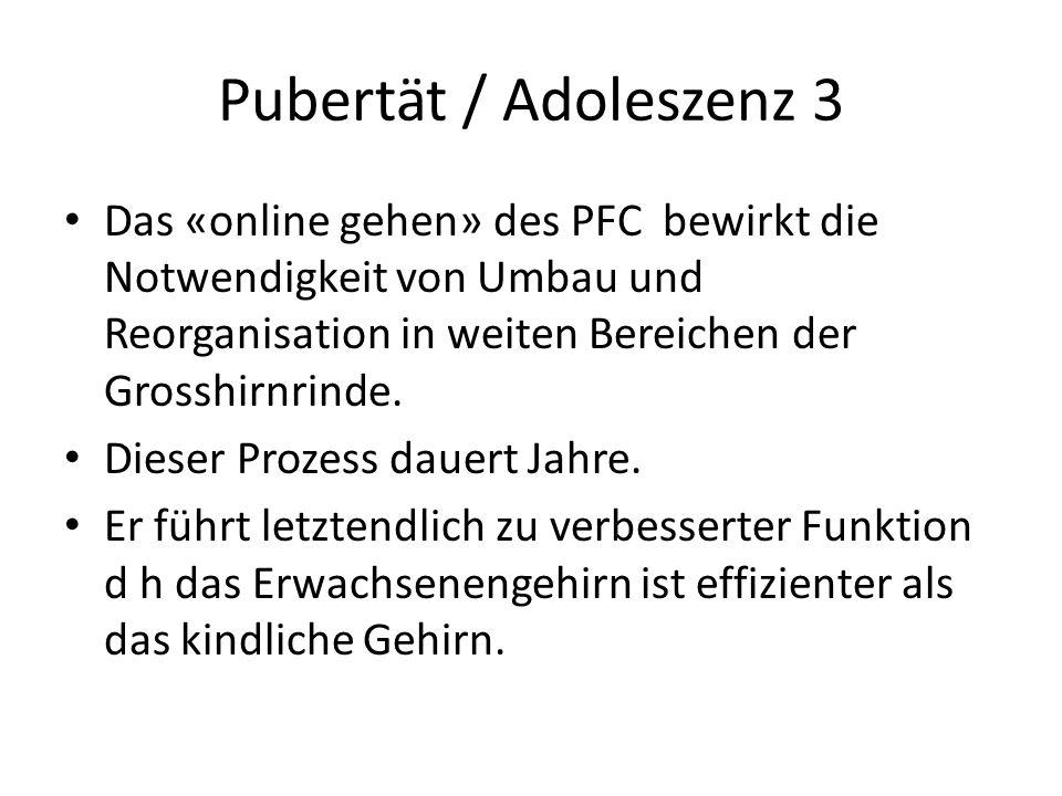 Pubertät / Adoleszenz 3 Das «online gehen» des PFC bewirkt die Notwendigkeit von Umbau und Reorganisation in weiten Bereichen der Grosshirnrinde. Dies