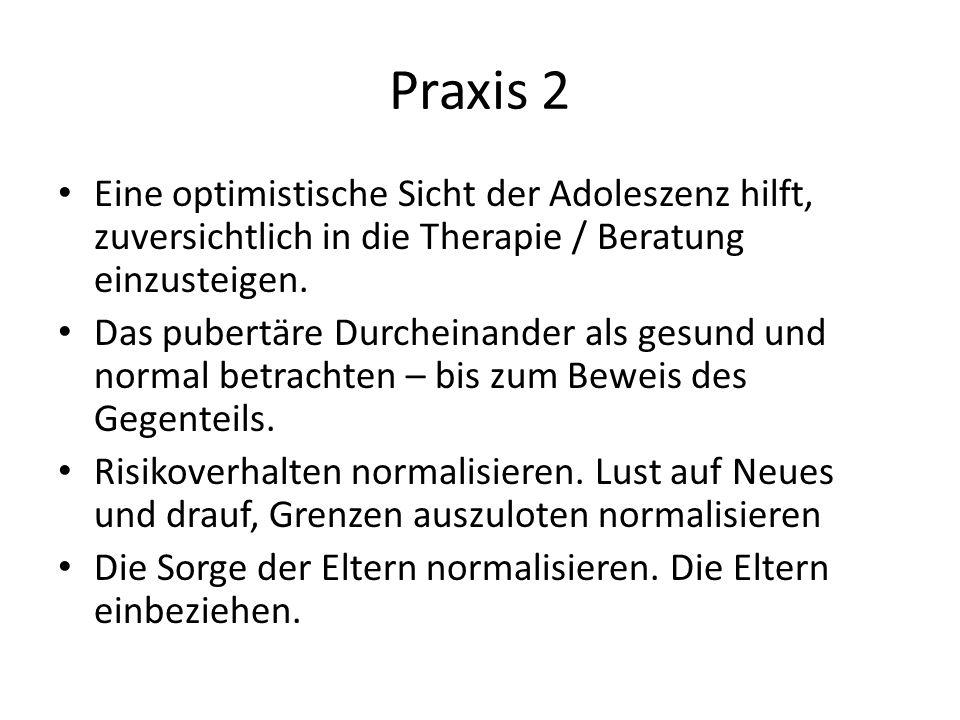 Praxis 2 Eine optimistische Sicht der Adoleszenz hilft, zuversichtlich in die Therapie / Beratung einzusteigen. Das pubertäre Durcheinander als gesund