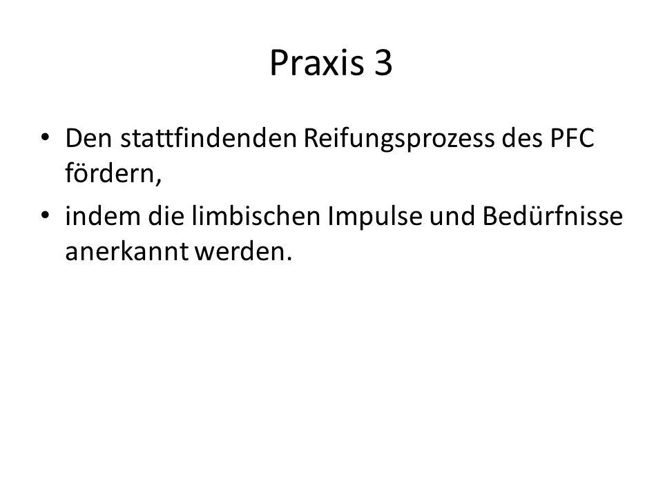 Praxis 3 Den stattfindenden Reifungsprozess des PFC fördern, indem die limbischen Impulse und Bedürfnisse anerkannt werden.