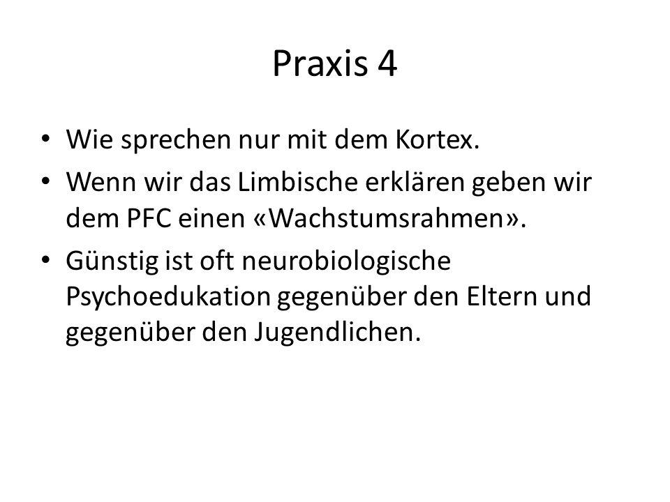 Praxis 4 Wie sprechen nur mit dem Kortex. Wenn wir das Limbische erklären geben wir dem PFC einen «Wachstumsrahmen». Günstig ist oft neurobiologische