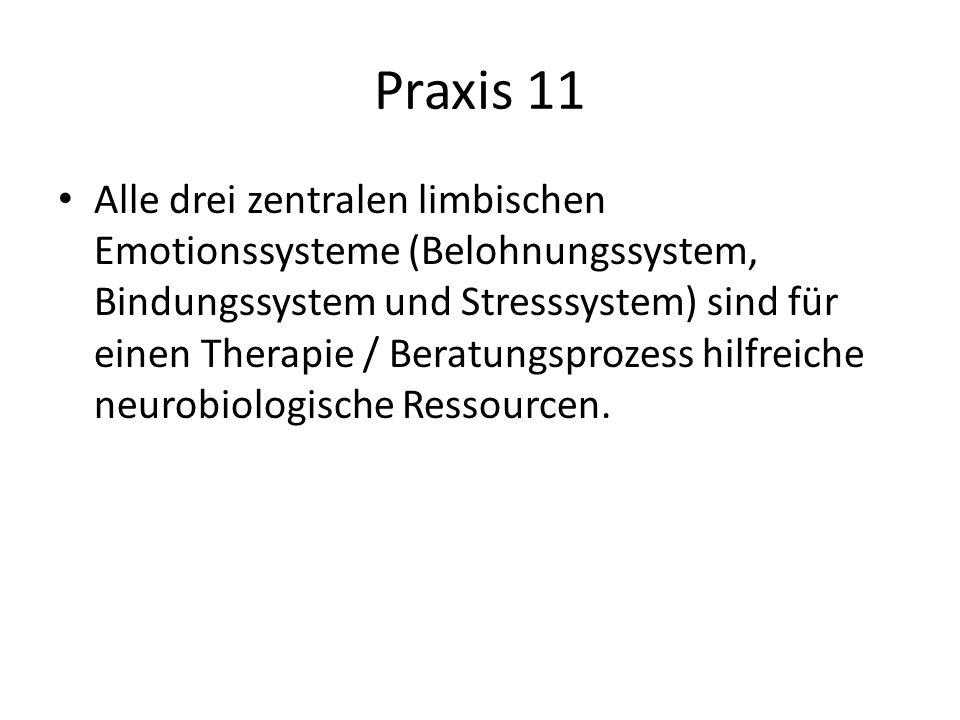 Praxis 11 Alle drei zentralen limbischen Emotionssysteme (Belohnungssystem, Bindungssystem und Stresssystem) sind für einen Therapie / Beratungsprozes