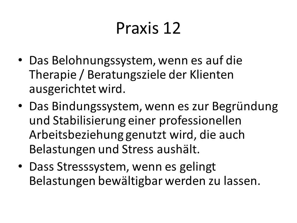 Praxis 12 Das Belohnungssystem, wenn es auf die Therapie / Beratungsziele der Klienten ausgerichtet wird. Das Bindungssystem, wenn es zur Begründung u
