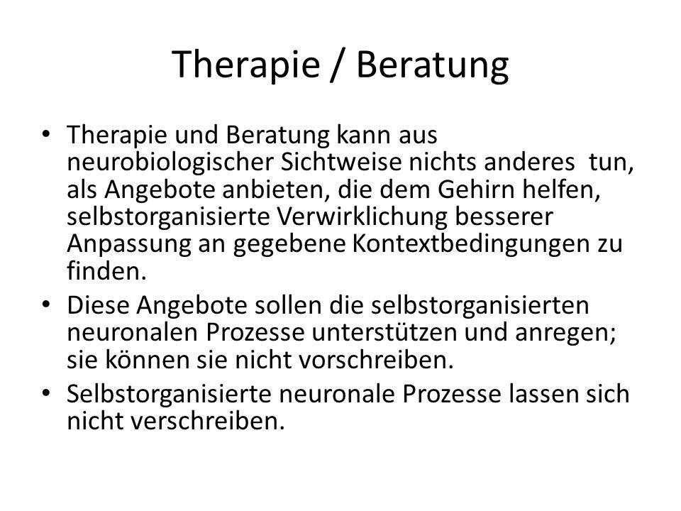 Therapie / Beratung Therapie und Beratung kann aus neurobiologischer Sichtweise nichts anderes tun, als Angebote anbieten, die dem Gehirn helfen, selb