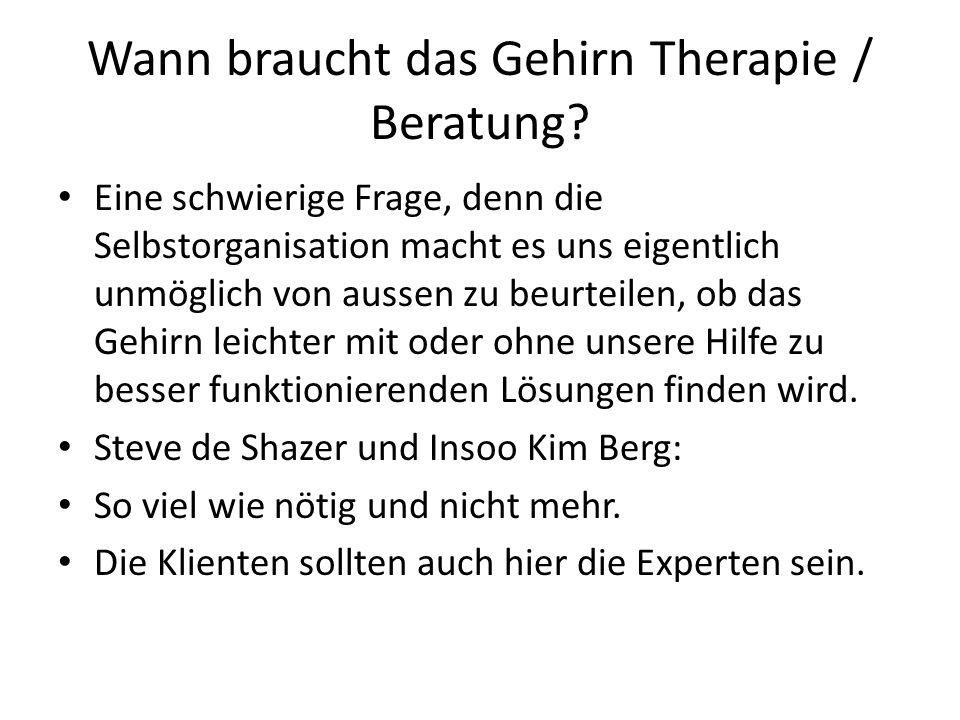 Wann braucht das Gehirn Therapie / Beratung? Eine schwierige Frage, denn die Selbstorganisation macht es uns eigentlich unmöglich von aussen zu beurte
