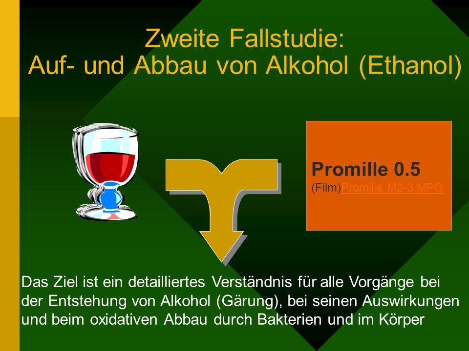 Zweite Fallstudie: Auf- und Abbau von Alkohol (Ethanol) Das Ziel ist ein detailliertes Verständnis für alle Vorgänge bei der Entstehung von Alkohol (G