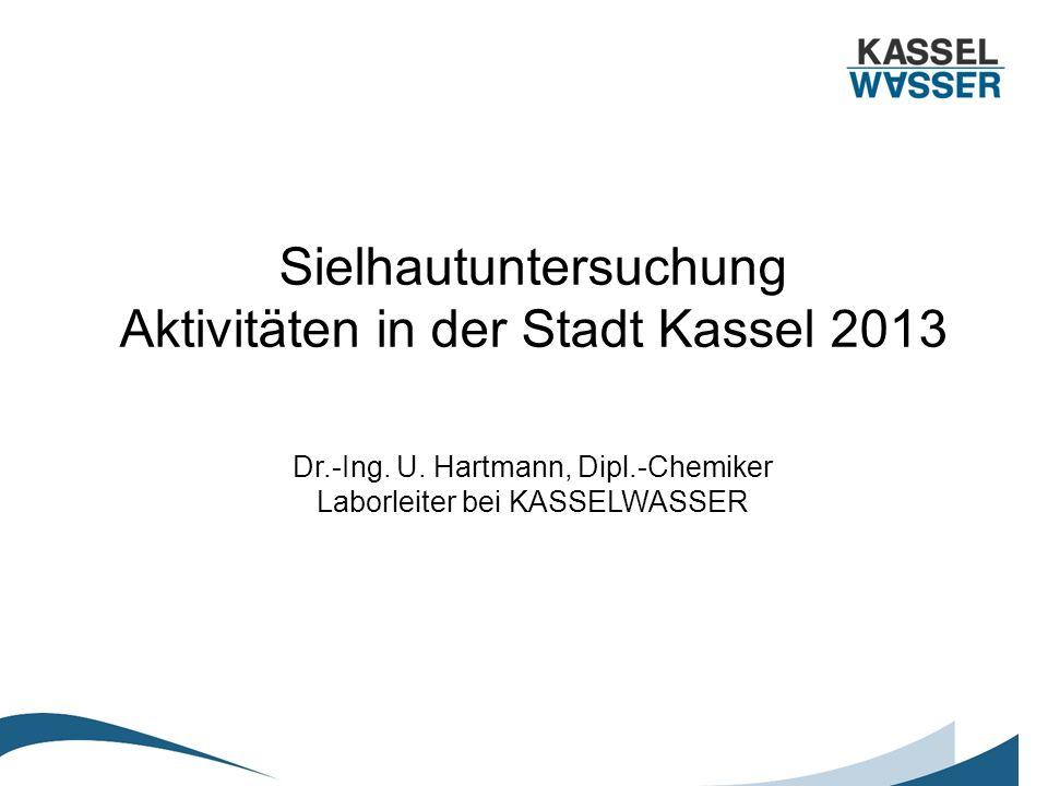 Sielhautaktivitäten Stadt Kassel 2013 (I) Personal: –1 Ingenieur (Bachelor, ½ Stelle befristet 31.12.13) –LabormitarbeiterInnen für die Parameter: Glühverlust, Schwermetalle, AOX Konzept: –Flächendeckende Sielhautuntersuchung mit ca.
