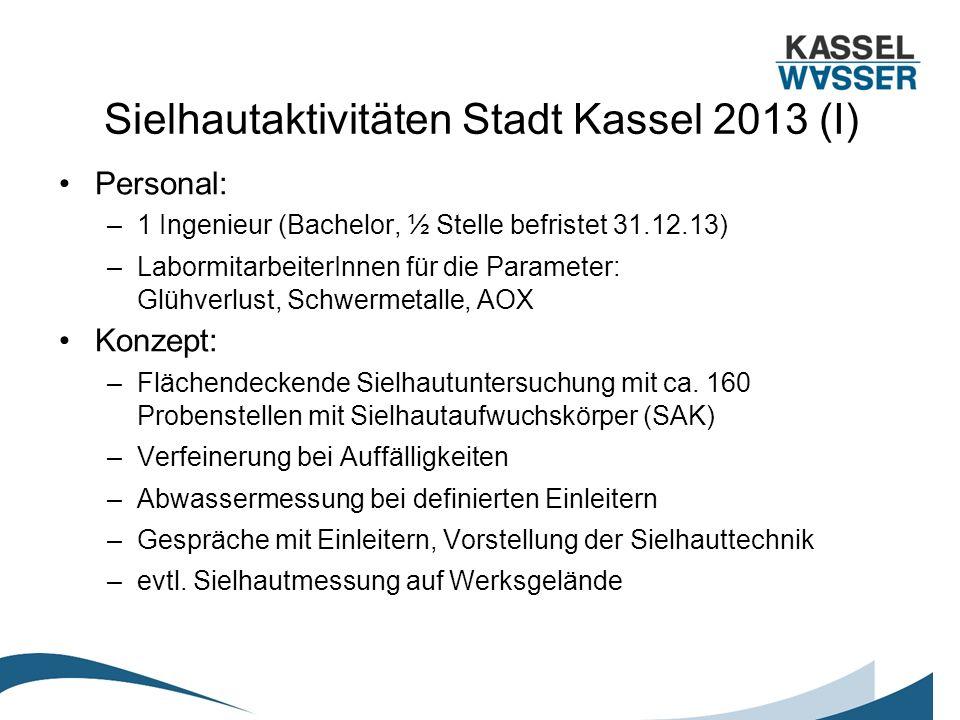 Sielhautaktivitäten Stadt Kassel 2013 (I) Personal: –1 Ingenieur (Bachelor, ½ Stelle befristet 31.12.13) –LabormitarbeiterInnen für die Parameter: Glü