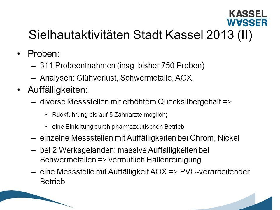 Sielhautaktivitäten Stadt Kassel 2013 (II) Proben: –311 Probeentnahmen (insg. bisher 750 Proben) –Analysen: Glühverlust, Schwermetalle, AOX Auffälligk