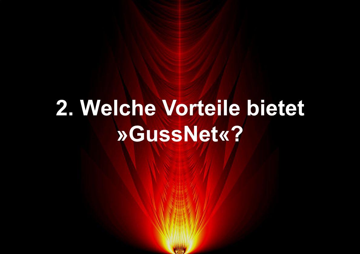 2. Welche Vorteile bietet »GussNet«