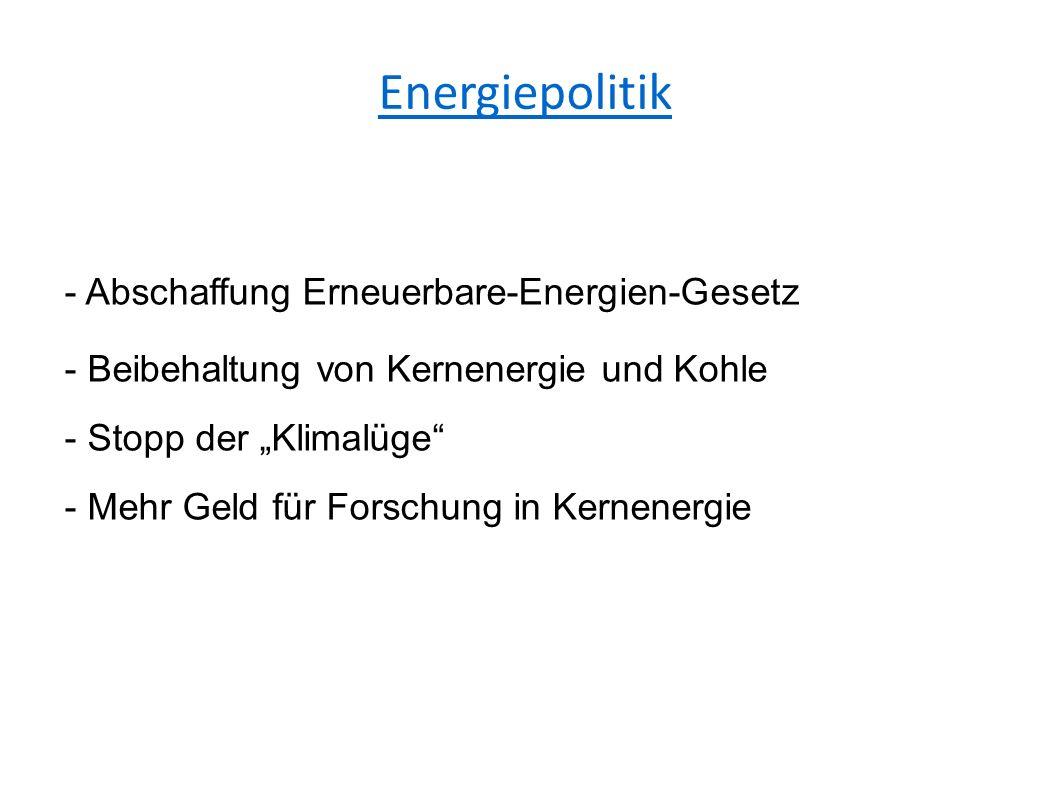 """Energiepolitik - Abschaffung Erneuerbare-Energien-Gesetz - Beibehaltung von Kernenergie und Kohle - Stopp der """"Klimalüge - Mehr Geld für Forschung in Kernenergie"""