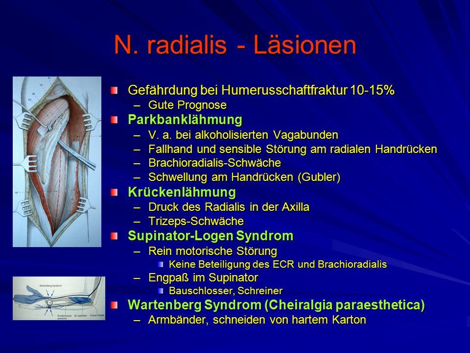N. radialis - Läsionen Gefährdung bei Humerusschaftfraktur 10-15% –Gute Prognose Parkbanklähmung –V. a. bei alkoholisierten Vagabunden –Fallhand und s