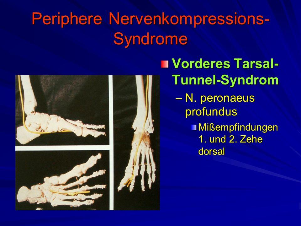 Periphere Nervenkompressions- Syndrome Vorderes Tarsal- Tunnel-Syndrom –N. peronaeus profundus Mißempfindungen 1. und 2. Zehe dorsal