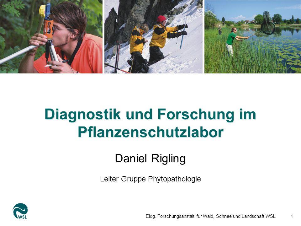Diagnostik und Forschung im Pflanzenschutzlabor Eidg.