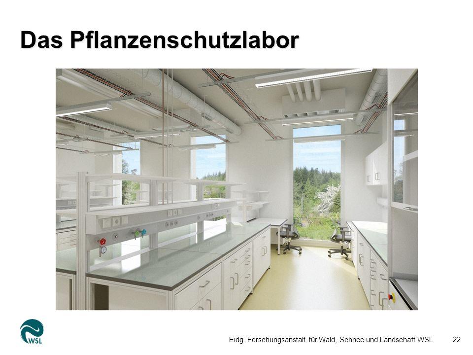 Das Pflanzenschutzlabor Eidg. Forschungsanstalt für Wald, Schnee und Landschaft WSL22