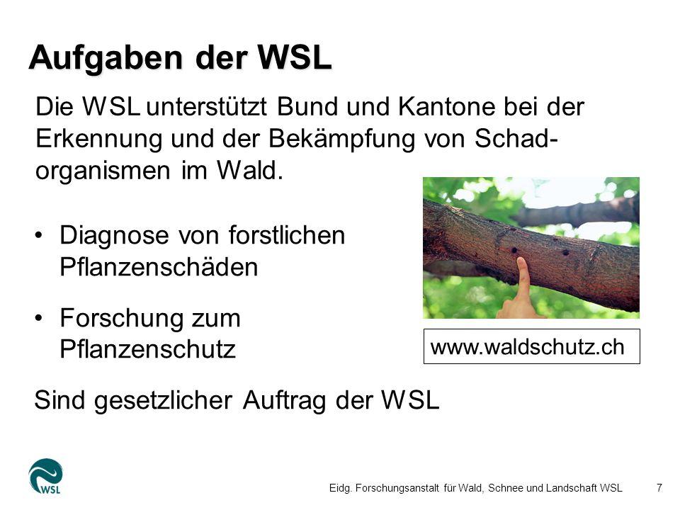 Aufgaben der WSL Diagnose von forstlichen Pflanzenschäden Forschung zum Pflanzenschutz Sind gesetzlicher Auftrag der WSL Eidg.