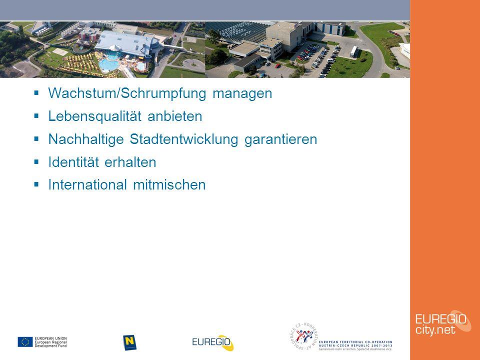  Wachstum/Schrumpfung managen  Lebensqualität anbieten  Nachhaltige Stadtentwicklung garantieren  Identität erhalten  International mitmischen